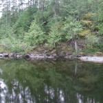 Sooke River in late spring