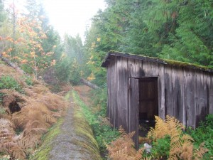 The shed along the pipe