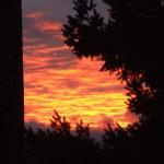 The burning sunset