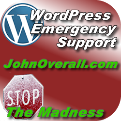 Emergency WordPress Support Available Now