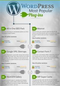 Top 30 WordPress Plugins