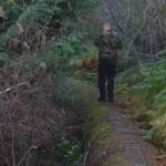 The path ahead on the watermain