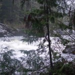 The Sooke River was up