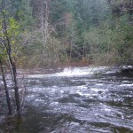 The Sooke River hitting some high marks