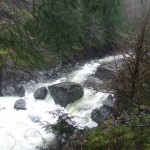 Sooke River running high from the rains