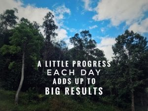 "a forest background with text reading ""A little progress each day adds up to big results"""