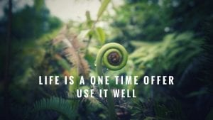 "text reading ""Life is a one time offer Use it well"" over a fern."